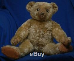 Exceptional Quality Golden Mohair WW1 Era Antique 25 Farnell Teddy For Some TLC