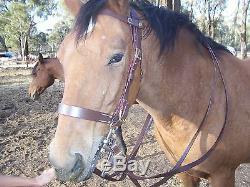 Light horse WWI pattern Bridle
